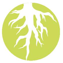 Deep Roots Program